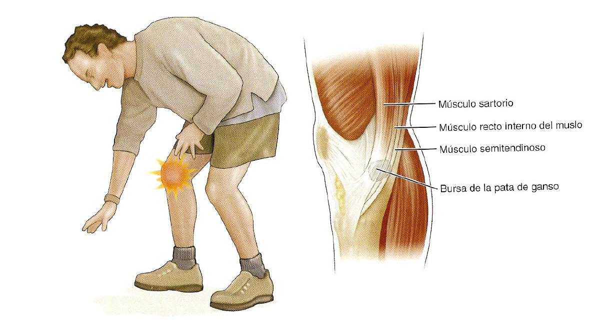 Por la osteocondrosis sheynogo del departamento sheynogo del masaje